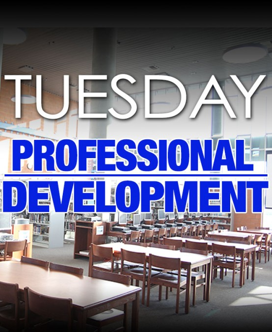 Professional Development (Whole Group)