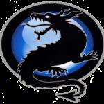 bernstein dragon logo