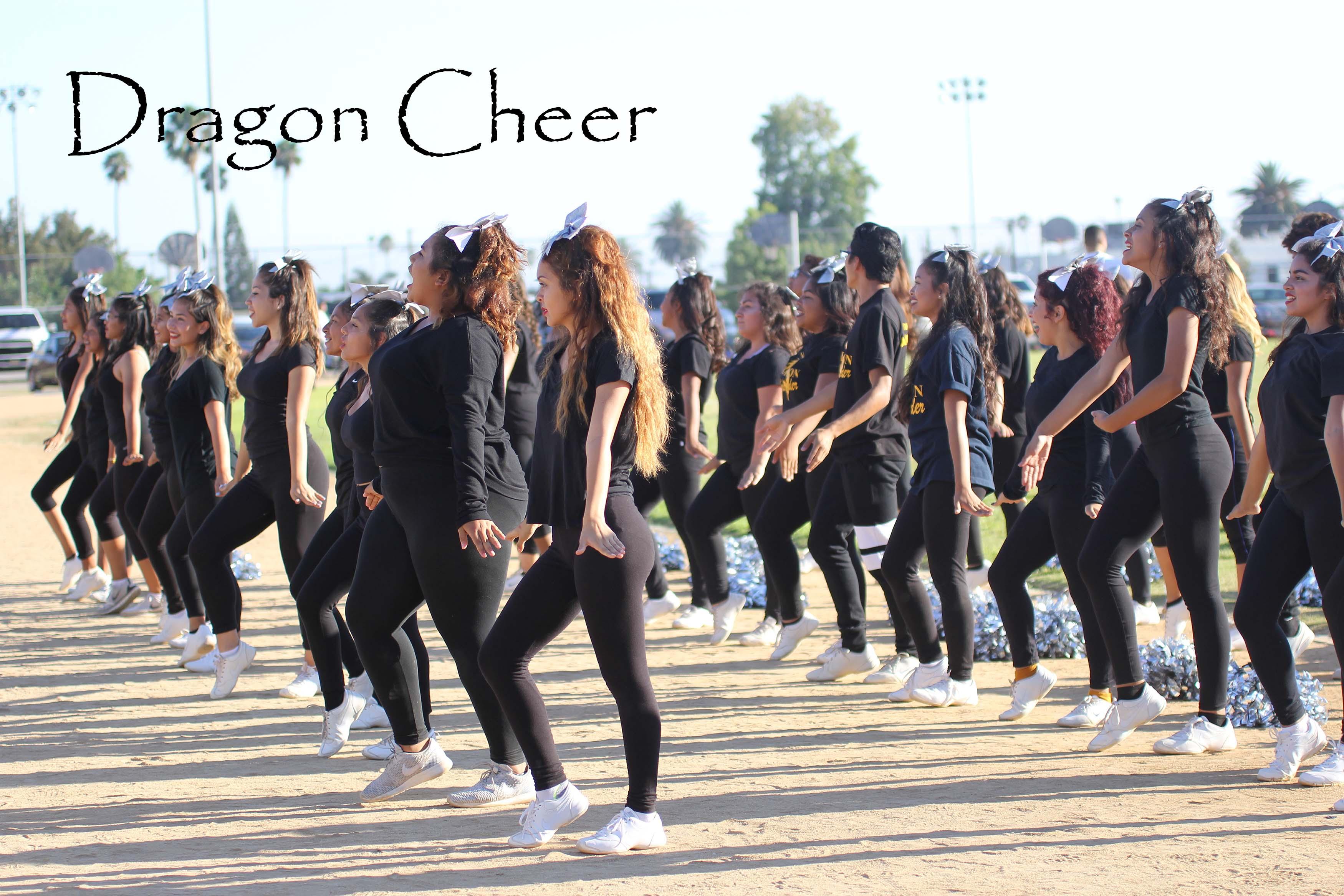 Cheer Squad 2016-2017