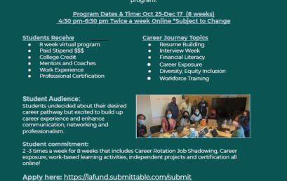 TheInternProject Career Cohort